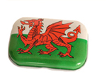 wales dragon mini tin